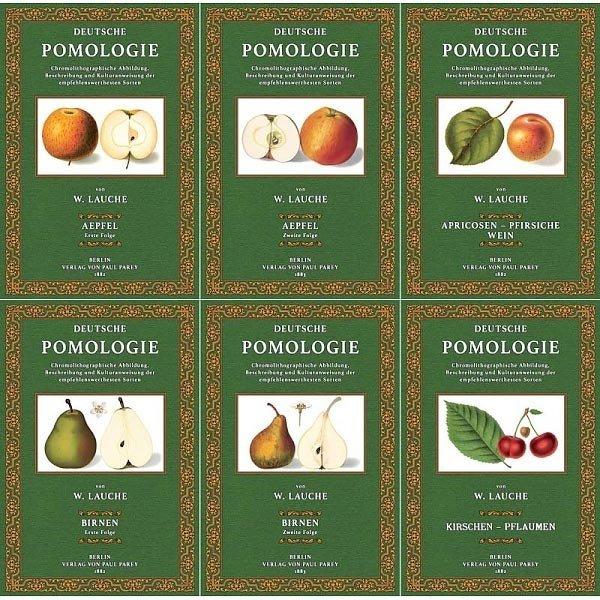 Deutsche Pomologie (Band 1-6): Äpfel, Birnen, Kirschen, Pflaumen, Apricosen, Pfirsiche und Weintrauben