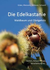 Die Edelkastanie – Waldbaum und Obstgehölz