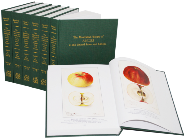 The Illustrated History of Apples in the United States and Canada